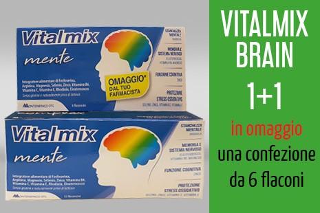 Vitalmix1+1-mente